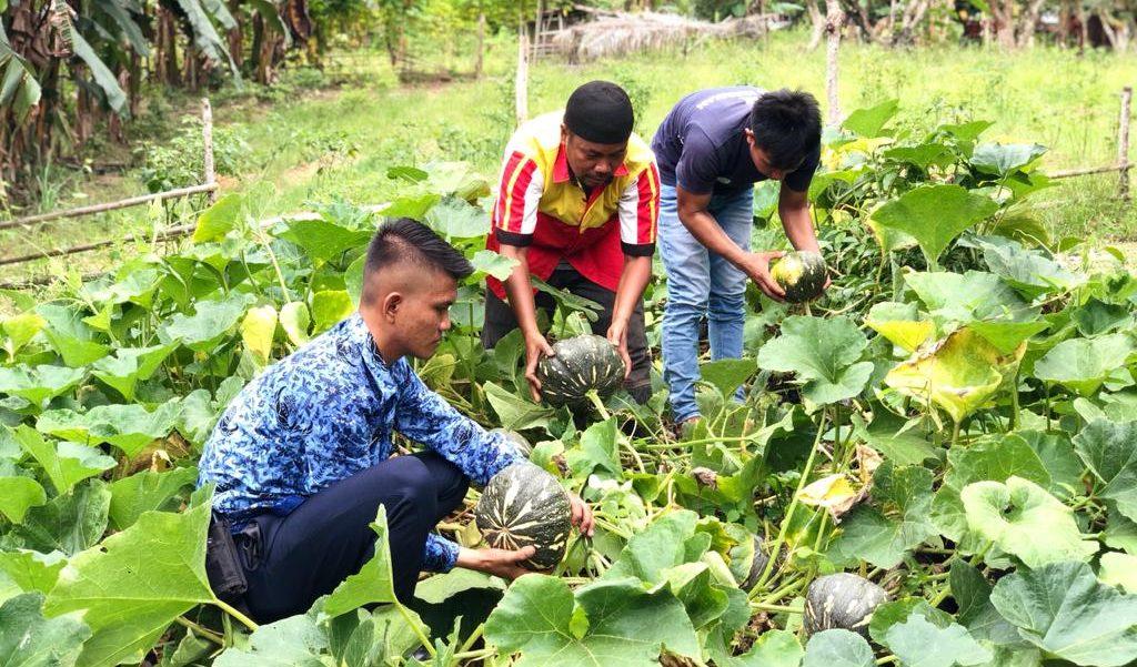 Agrowisata Lapas Nunukan
